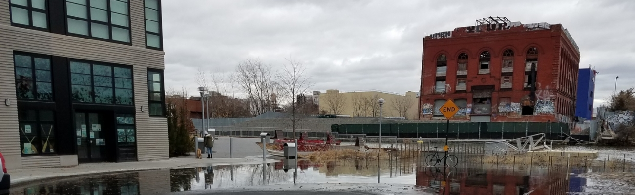 Sponge Park Flooded After Storm
