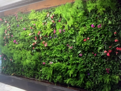 Vegetated Growing Wall in Brooklyn